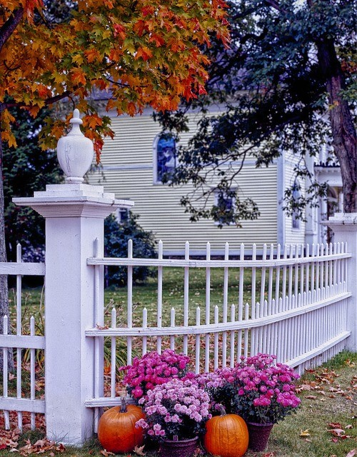 Fall Home Maintenance Advice Every Homeowner Should Know