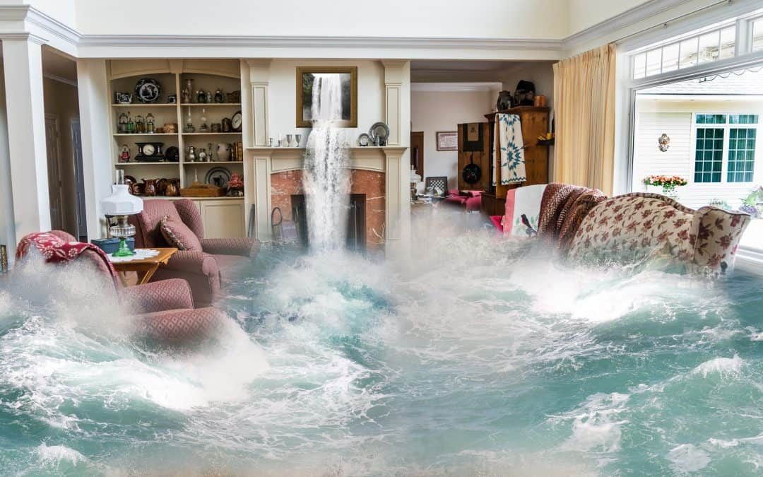 Steps to Take After Your House Has Experienced Water Damage